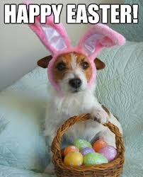 Easter Funny Memes - happy easter funny happy easter meme happy easter sunday