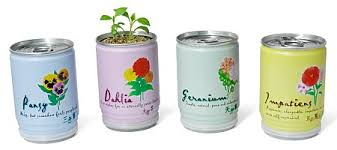 gift ideas for apartment gardening ohmyapartment apartmentratings
