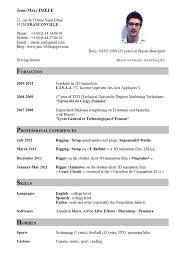 sample of a cv resume curriculum vitae english example university template resume english example template