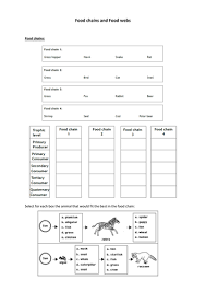 worksheets food chains and food webs worksheet opossumsoft