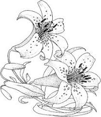 flower coloring pages adults flowers coloring pages