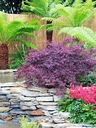 Small Tropical Garden Ideas Tropical Garden Design Plans Margarite Gardens