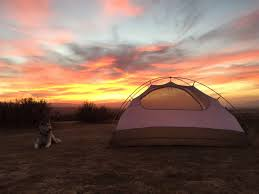 songdog west campsites cuyama badlands ca 87 hipcamper reviews