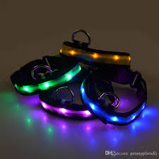 collar light for small dogs discount g05 new design pet led collar nylon luminous puppy small