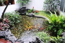 Pond In Backyard by Controlling Algae In A Pond Thriftyfun