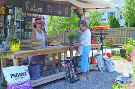 sugar creek gardens uses creative solutions to draw in customers