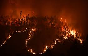 Wildfires In Colorado by Photos Of The Deadly Wildfires In Portugal The Atlantic