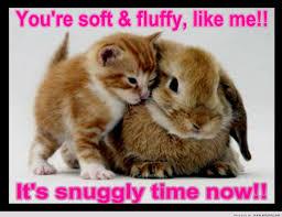 Cute Easter Meme - cute easter bunny