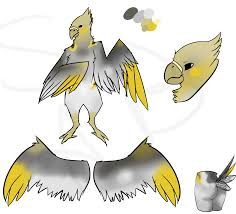 cartoon cockatiel anthro cockatiel ref by thenumberjay on deviantart