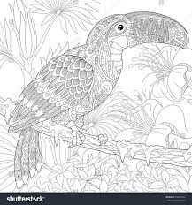 awesome palm tree branches coloring pages gallery printable