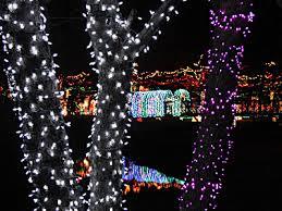 Rhema Christmas Lights Danz Family Rhema Christmas Lights