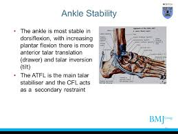 Collateral Ligaments Ankle Cover Slide Ppt Video Online Download