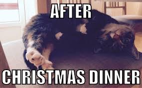 After Christmas Meme - stuffed after christmas imgur
