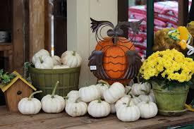 autumn garden gallery u2013 homestead garden center u2013 757 566 0404