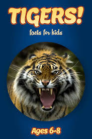 tiger facts for kids kids nonfiction book clouducated ages 6 8