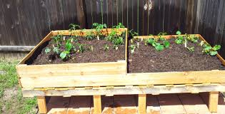 raised garden boxes from pallets home outdoor decoration