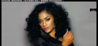 don t hate me i love joseline hernandez s hair charcoal ink