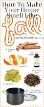 Simmer Pot Recipes 6 Easy Stovetop Potpourri Recipes For Every Season Potpourri