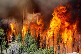 Wild Fires In Oregon State by Fire Risk Is High Throughout West Northern Plains The Spokesman