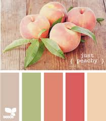kinda addicted to this site and these color pallettes colors