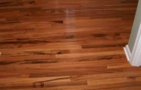 hardwood floors or carpethardwood with large dogs cleaning dog
