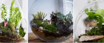 the best brisbane terrariums lifestyle style magazines