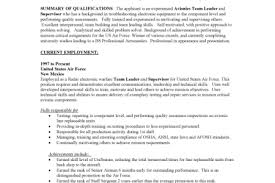 Example Of A Military Resume Irs Resume Essay Questions For The Count Of Monte Cristo Example