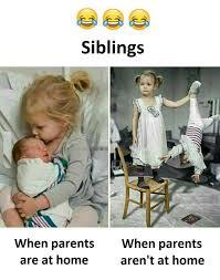 Funny Sibling Memes - siblings siblings memes and humor