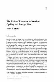 Sample Pharmaceutical Resume The Role Of Protozoa In Nutrient Cycling And Energy Flow Springer