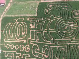 georgia corn maze fall fun at jaemor farms