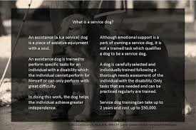 if i were issuing service dog letters as a psychologist what