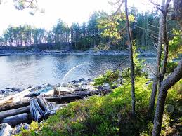 Haskins Valley Campground Outdoor Activities Campbell River Vancouver Island Bc