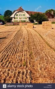 field farmstead farm farmhouse farm house burgdorf feld