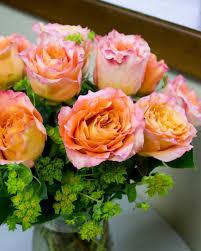 viviano flower shop vivianosflowers twitter