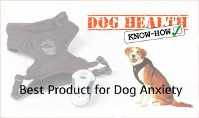 best product for dog anxiety dog health know how