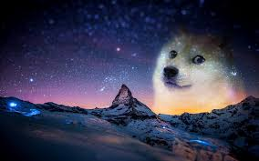 Astronomy Memes - wallpaper animals night humor snow memes doge arctic