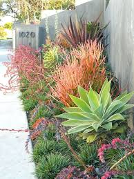 Desert Backyard Landscaping by Easy Care Front Yard Landscaping Desert Garden Design Nice Idea 23