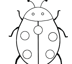 preschool coloring pages bugs bugs coloring pages preschool coloring page coloring page bugs