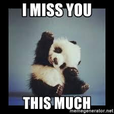 Miss You Meme - i miss you this much cute baby panda meme generator