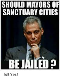Hell Yes Meme - should mayors of sanctuary cities bejailed hell yes hell meme