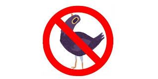 Meme Stickers For Facebook - what is trash dove the purple bird spamming facebook