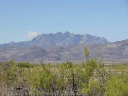 New Mexico vegetaion images 1 acre cheap land for sale in nm JPG