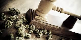 pot initiatives predicting the next 15 states to legalize marijuana