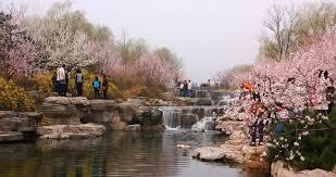 Beijing Botanical Garden Beijing Botanical Garden Beijing Sports Recreation That S