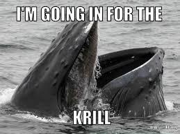 Whale Meme - whale puns punpedia