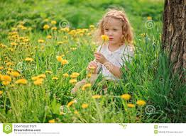 Cute Child by Cute Child On Dandelion Flower Field Stock Photo Image