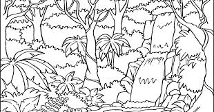 free coloring page of the rainforest rainforest coloring pages iltorrione org