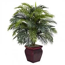 best indoor floor plants floor plants indoor plants