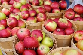 Apples/Apple Cider Vinegar