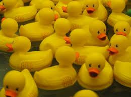 photo of rubber ducks